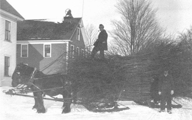Clarence and Ernest Harrington delivering witch hazel to the Gould Witch Hazel Distillery on the turnpike in Windham.